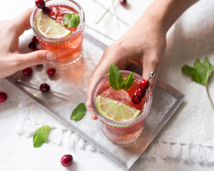 Sparkling Cranberry Mint Punch