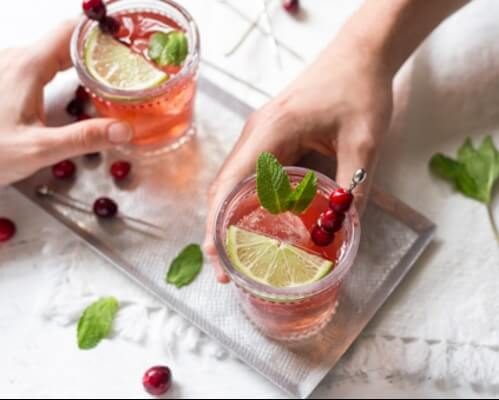 Cranberry Mint Punch